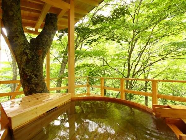Nagano Onsen Ryokan