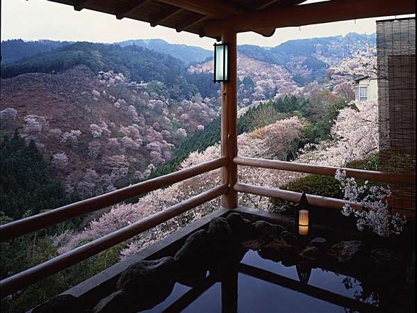 Nara Onsen Ryokan