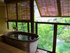 Kinugawa private open-air bath